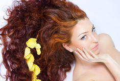 härlig tät haired ladyred upp Royaltyfri Fotografi