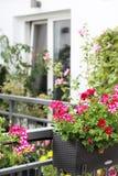 Härlig terrass med många blommor Arkivfoto