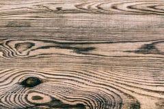 Härlig textur från gammalt ridit ut trä royaltyfri bild