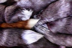 Härlig textur gjorde av pälsar av djur, rödaktig svans royaltyfri fotografi