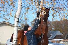 Härlig tonåringflicka och stående för fjärdhäst i höst Arkivfoto