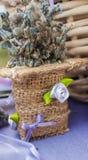 Härlig torkad lavendel på marknaden Royaltyfria Foton