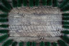 Härlig träbakgrund med trädfilialer och en härlig karaktärsteckning Arkivbilder