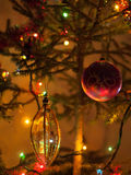 Härlig trädfilial för nytt år Royaltyfri Fotografi