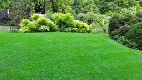 härlig trädgård Royaltyfri Bild