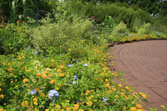 härlig trädgård Arkivfoto