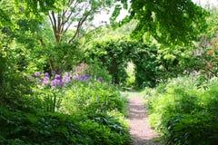 härlig trädgård Fotografering för Bildbyråer
