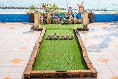 Härlig trädgård en nytt mejad gräsmatta med havsbakgrund Arkivbild