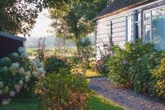 Härlig trädgård i lilla byn Haaldersbroek nära Zaandam Fotografering för Bildbyråer