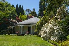 Härlig trädgård i Mt wilson fotografering för bildbyråer
