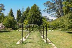 Härlig trädgård i Mt wilson arkivfoto