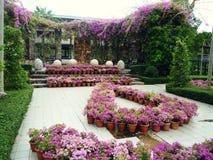 Härlig trädgård i thailand Arkivfoton