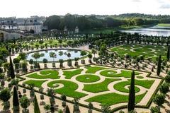 Härlig trädgård med gröna geometriska former i Frankrike Arkivbild
