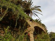 Härlig trädgård med röda blommor och palmträd arkivfoto