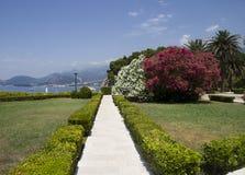 Härlig trädgård på seafronten Fotografering för Bildbyråer