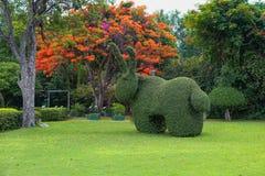 Härlig trädgårdkonstgarnering på exotisk trädbakgrund för blomning i parkerar royaltyfri fotografi