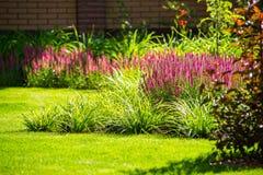 Härlig trädgårdlandskapdesign Sikten av färgrika träd och dekorativa klippte buskar vaggar Arkivbild