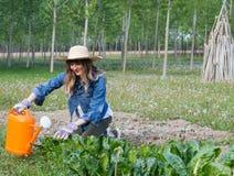 härlig trädgårds- flicka Arkivbilder