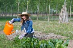 härlig trädgårds- flicka Arkivfoto