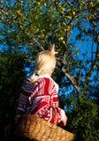 härlig trädgårds- kvinna för korg Royaltyfri Bild