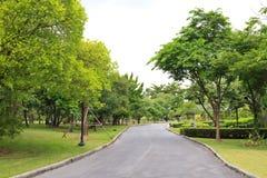 härlig trädgårds- park Royaltyfri Foto