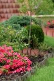 härlig trädgårds- sommar Fotografering för Bildbyråer