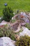 härlig trädgårds- sommar Arkivbilder