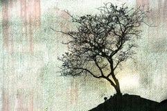 Härlig trädkontur och grungebakgrund Arkivfoto