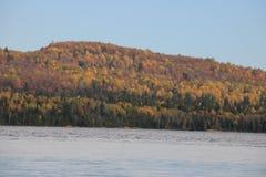 Härlig trädregnbåge, Tadoussac Quebec Royaltyfri Foto