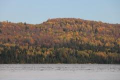 Härlig trädregnbåge, Tadoussac Quebec Royaltyfria Bilder