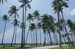 Härlig traditionell by som lokaliseras i Terengganu, Malaysia Omgivet av naturen Arkivfoto