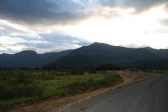 härlig trail arkivbilder