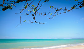 Härlig tropisk havsstrand royaltyfri bild
