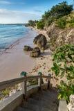 Härlig tropisk kust med klart vatten Royaltyfri Bild