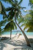Härlig tropisk solig strandlandskapsikt med palmträd och hav och cabana på ön på semesterorten royaltyfri bild