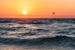 Härlig tropisk soluppgång på stranden över havet, Mexico Royaltyfria Bilder