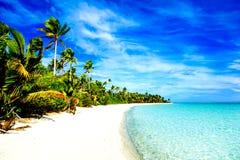 Härlig tropisk strand royaltyfri fotografi