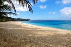 Härlig tropisk strand i Filippinerna Arkivfoto