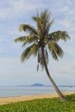 Härlig tropisk strand i Thailand Arkivfoto