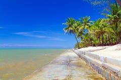 Härlig tropisk strand med kokosnötpalmträd Arkivfoton