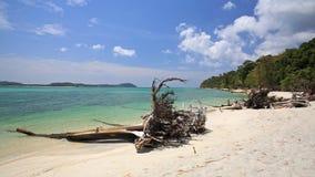 Härlig tropisk strand med liggande treestammar på Koh Adang Royaltyfri Fotografi