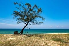 Härlig tropisk strand, mjuk våg som slår den sandiga stranden under ljus solig dag Arkivbild