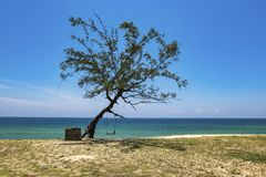 Härlig tropisk strand, mjuk våg som slår den sandiga stranden under ljus solig dag Royaltyfri Bild