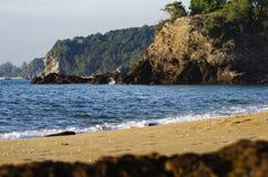 Härlig tropisk strand, mjuk våg som slår den sandiga stranden under ljusare solig dag Royaltyfria Bilder