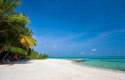 Härlig tropisk strand på Maldiverna Arkivbilder