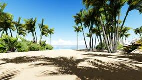 Härlig tropisk strandantenn - fågels en sikt för öga av havvågor vektor illustrationer