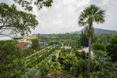 Härlig tropisk trädgård royaltyfria foton