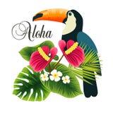Härlig tropisk växt och bärbar dator _ för sommarterritorium för katya krasnodar semester Arkivbild