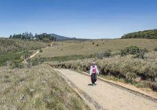 Härlig ung europeisk kvinna som går på vägen på Horton'sens slättnationalparken royaltyfria bilder