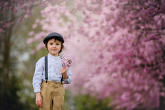 Härlig ung förskole- pojke som står i en körsbärsröd blomning gard Arkivfoto